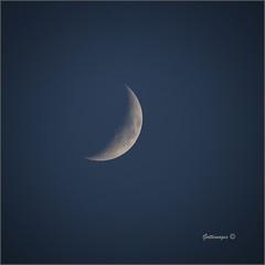 Photo of AP_024_DSC05818_Moon 27.05.20_21.10BST by Philip Gott