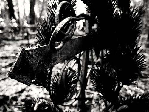 rough iron cross ©  Sergei F