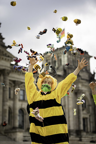 Insekten schützen! BUND-Aktion am 19.5.2020
