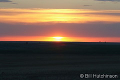 May 20, 2020 - Sunrise on the plains. (Bill Hutchinson)
