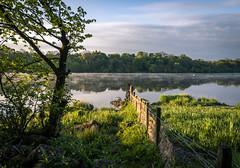 Photo of Fence, Castle Semple Lake, Lochwinnoch, Renfrewshire, Scotland, UK