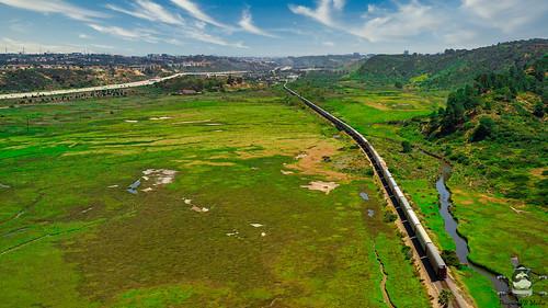 Torrey Pines Reserve Train