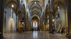 Santa Maria Novella Nave