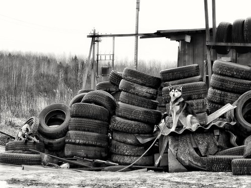 I protect these tires. I at work ©  Sergei F