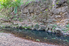 Basalt along the creek