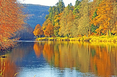 Photo of The river Tay Autumn Colours