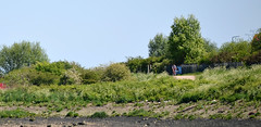 Photo of Thames side Cycling