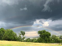 """""""It takes sunshine and rain to make a rainbow. There would be no rainbows without sunshine and rain.""""  ~ Roy T. Bennett 🌈☀️💦  Hermitage, TN"""