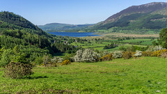 Photo of Bassenthwaite Lake