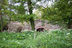 Photo of Old Bridge, Warcop, England