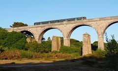 Photo of 150266 Carnon Viaduct