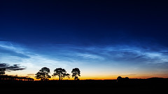 Photo of Noctilucent Clouds 2020 May 31 - 00:56 UT