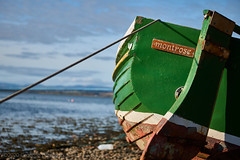 Photo of Montrose Basin 2010-11-07a