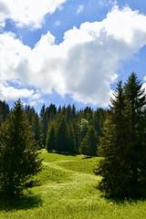 Anglų lietuvių žodynas. Žodis slalom reiškia n sport. slalomas lietuviškai.