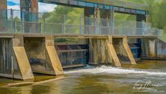 Sluice gates on the Speed River