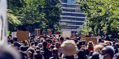 2020.05.31 Protesting the Murder of George Floyd, Washington, DC USA 152 35045