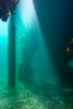 Scuba Dive At Blairgowrie Pier-1