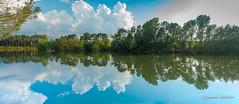 Reflet sur l'eau