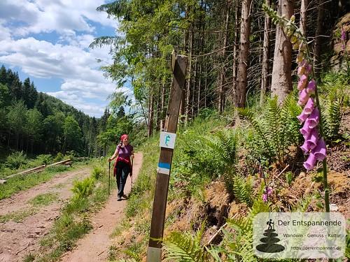 Kurz vor der Teufelshütte - Felsenwanderweg um Rodalben im Pfälzer Wald