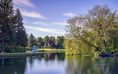 Photo of Cooper Park...