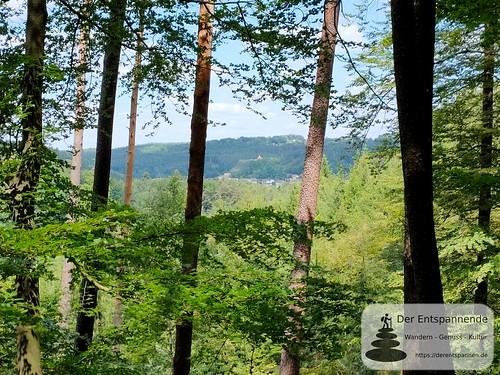 Blick über Rodalben auf Hilschberghaus - Felsenwanderweg um Rodalben im Pfälzer Wald