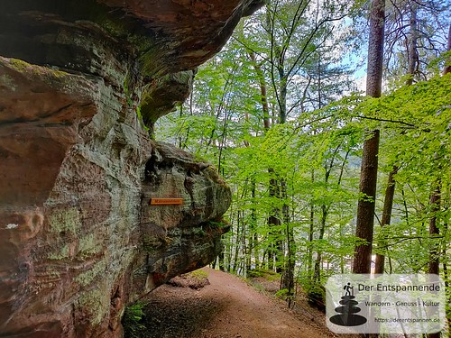 Maibrunnenfelsen - Felsenwanderweg um Rodalben im Pfälzer Wald