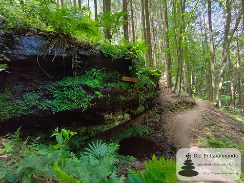 Seibelsbachfelsen - Felsenwanderweg um Rodalben im Pfälzer Wald
