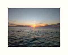 ...sunrise swimming delight...