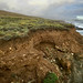 Spectacular bluff exposes Ice Age gravels atop Franciscan melange. North coast of SLO County, CA