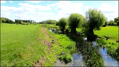 Photo of RIVER THAME, UPSTREAM