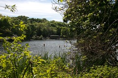 Photo of Raith Lake  4