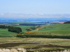 Photo of East Lothian from the Lammermuirs