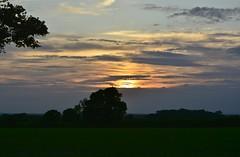 Photo of Redhill sunset 020620_DSC7569