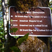 Old Growth Ridge National Recreation Trail