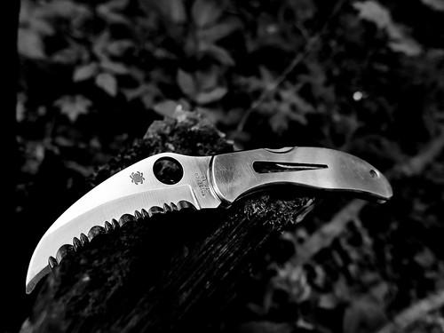Spyderco Harpy. Hannibal Lecter approves ©  Sergei F