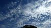 Clouds 02-06-20 (6)