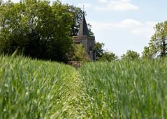 Photo of St Leonard's Church, Chelsham | Farleigh Circular Walk-2