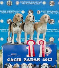 Zadar  20012
