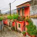 Hidden Corfu Road
