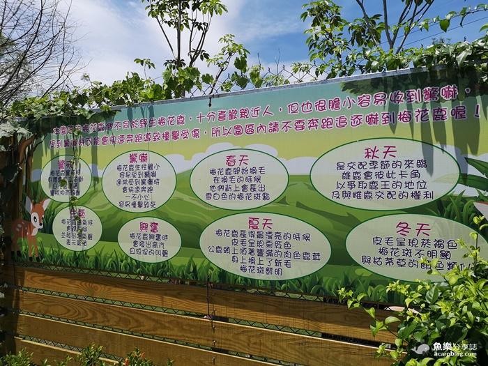 【宜蘭三星】張美阿嬤農場- 一秒飛日本 穿美美和服餵小鹿|門票 交通資訊 @魚樂分享誌