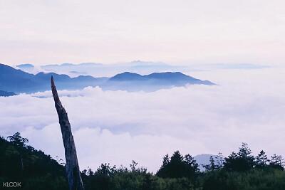 (圖6)前往大雪山國家森林遊樂區,在高海拔欣賞雲霧繚繞美景