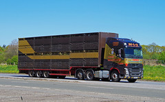 Photo of VOLVO FH - M-L-G Forres
