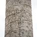 Column of Trajan, Trajan addresses troops after victory (scene 42); Trajan meets with Dacians (scene 52); Dacian kneels before Trajan (scene 62)