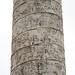 Column of Trajan, Trajan amidst his soldiers, meets Dacian ambassadors (scene 50-51); fort is built, Dacian kneels before Trajan (scenes 61-62); Romans prepare for attack (scene 66)