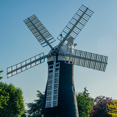 Holgate Windmill, May 2020 - 18