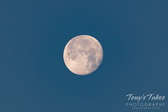 June 7, 2020 - An early morning moon. (Tony's Takes)