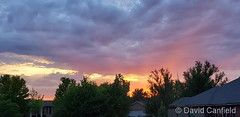 June 1, 2020 - A subtle but beautiful sunset. (David Canfield)