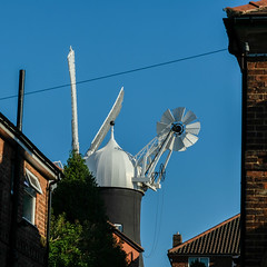 Holgate Windmill, May 2020 - 14