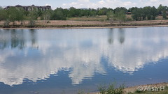 June 5, 2020 - Clouds reflected on a pond. (Alisa H)