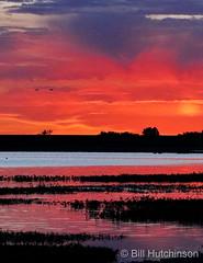 June 2, 2020 - Gorgeous sunrise at Barr Lake. (Bill Hutchinson)